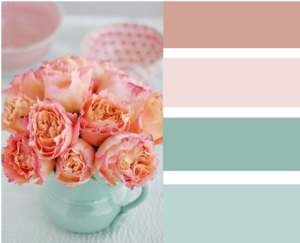 Peach Colour Pallette